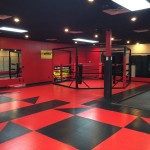 Fully Equipped Martial Arts Studio